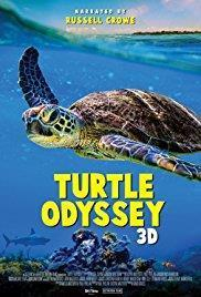 Turtle Odyssey cover art
