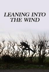 Leaning Into the Wind cover art