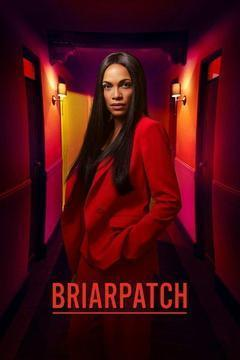Briarpatch Season 1 cover art
