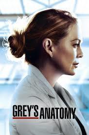 Grey's Anatomy Season 17 (Part 2) cover art