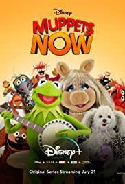 Muppets Now Season 1 cover art