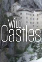 Wild Castles Season 1 cover art
