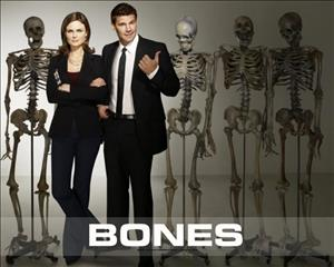 Bones Season 10 Episode 5: The Corpse at the Convention cover art
