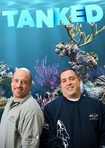 Tanked Season 9 cover art