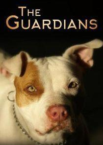 The Guardians Season 1 cover art