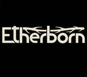 Etherborn cover art