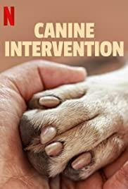 Canine Intervention Season 1 cover art