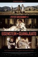 Eisenstein in Guanajuato cover art