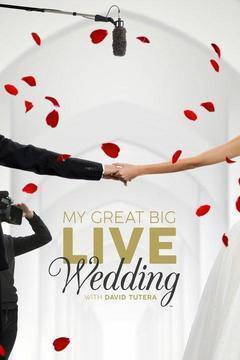My Great Big Live Wedding with David Tutera Season 1 cover art