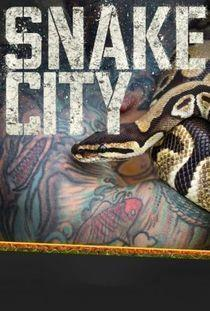 Snake City Season 5 cover art