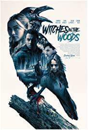 Witches in the Woods cover art