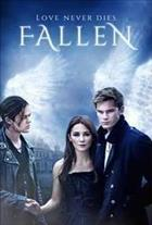 Movie Fallen  DVD cover art
