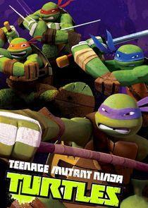 Teenage Mutant Ninja Turtles Season 5 cover art
