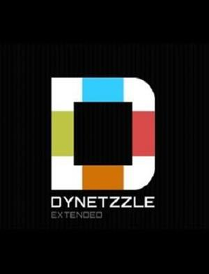 Dynetzzle Extended cover art