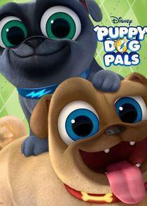Puppy Dog Pals Season 1 cover art