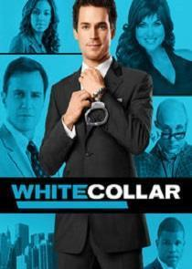 White Collar Season 5 cover art