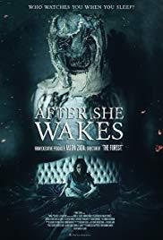 After She Wakes cover art