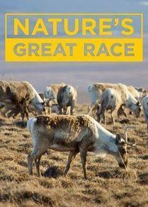 Nature's Great Race Season 1 cover art