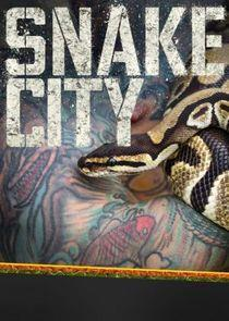 Snake City Season 3 cover art