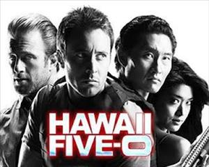 Hawaii Five-0 Season 5 Episode 8: Ka Hana Malu cover art