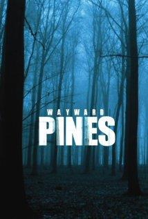 Wayward Pines Season 1 cover art