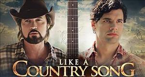 Like a Country Song cover art