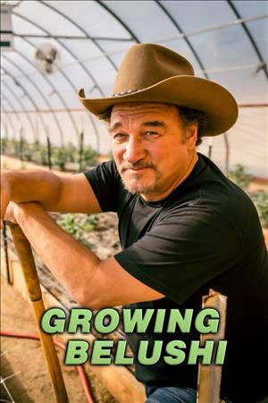 Growing Belushi Season 1 cover art