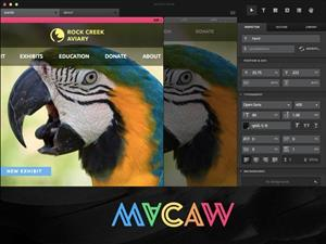 Macaw: The Code-Savvy Web Design Tool cover art