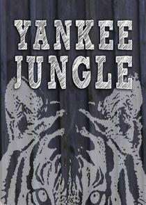 Yankee Jungle Season 2 cover art