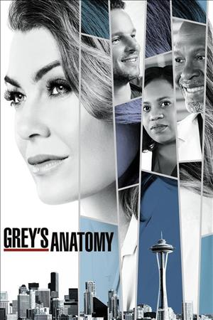 Grey's Anatomy Season 15 cover art
