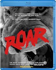 Roar cover art