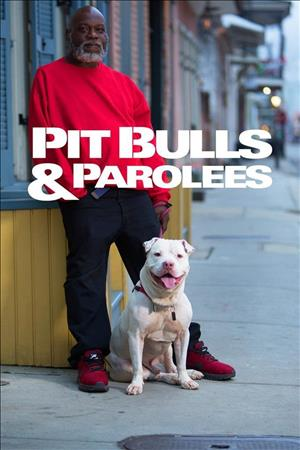 Pit Bulls & Parolees Season 16 cover art
