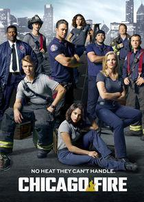 Chicago Fire Season 5 cover art