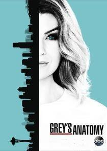 Grey's Anatomy Season 13 (Part 2) cover art